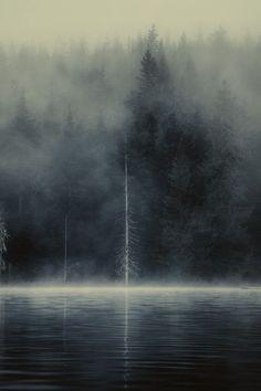 la imagen significa como aun estemos solos y en la oscuridad del mundo podemos mantenernos en pie para pasar el lago de la vida un lago lleno de amigos o enemigos