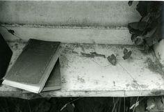 Debranne Cingari, Shelf, 2005, Ed. 25, silver gelatin photograph, 13 X 19 inches