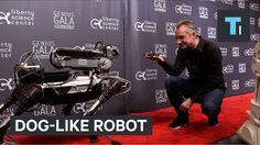 ❝ #VÍDEO - El perro robot SpotMini haciendo trucos de perro en el mundo real ❞ ↪ Vía: proZesa