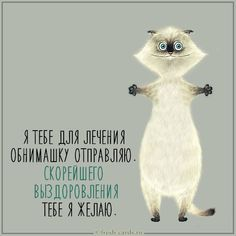 Funny Expressions, Positive Motivation, Picture Cards, Wishing Well, Greeting Cards, Positivity, Words, Quotes, Animals
