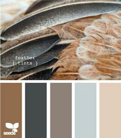 #Feathers #ColorInspiration---- living room/dining room?