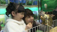 ペットショップでデートするチャン・グンソクと芦田愛菜 (C)NTV