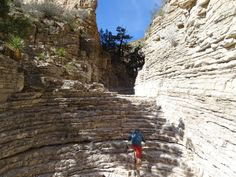 March 2, 2017 A new national park for us! Guadalupe Mountains National Park was again not on our radar and so when we were able to get to the area we wanted to see it. Guadalupe Mountains National …