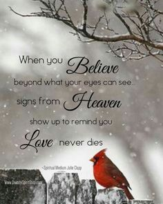 When you believe beyond what your eyes can see signs from heaven show up to remind you love never dies. Life Quotes Love, Great Quotes, Me Quotes, Inspirational Quotes, Motivational, Bird Quotes, Butterfly Quotes, Inspiring Sayings, Fabulous Quotes