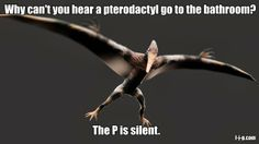Funny Dinosaur Joke Pun Picture Meme - Why can't you hear a pterodactyl go to the bathroom?  The P is silent.