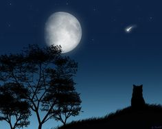 love the falling star & the moon. Great pic