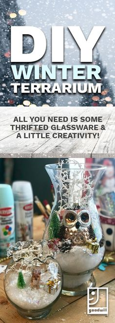 Make your own winter #terrarium as #seasonal #decor, or an easy #gift with some #thrifted glassware and a few #crafty ideas! Visit your local Goodwill and start making your #holidays something special.