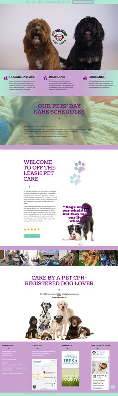 Doggie daycare and boarding client Service Awards, Dog Daycare, Pet Care, Dog Lovers, Web Design, Pets, Creative, Animals, Design Web