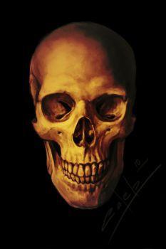 Skull by Zloy-Caleb