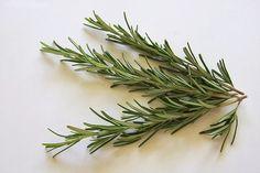 Tônico capilar de alecrim evita queda e acelera crescimento dos cabelos