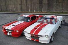 Two Beautiful Classic Mustangs