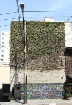 studio mk27 in Sao Paulo | he concrete facade stands out from the neighboring structures with trickling   overgrown ivy and an interactive chalk board found at street level.