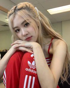 [IG] 190713 roses_are_rosie: Encore in bangkok ✨ u all killed it tonight 🥊💯 Divas, Kpop Girl Groups, Kpop Girls, Blackpink Wallpaper, Black Pink, Rose Park, Blackpink Photos, Pictures, Kim Jisoo