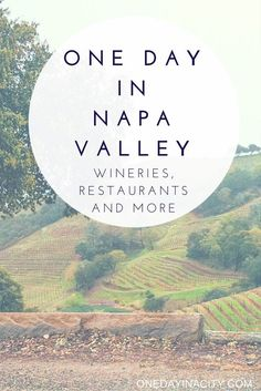 One Day In Napa Valley Wineries Restaurants More