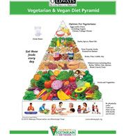 New Vegetarian and Vegan Food Pyramid and plant-based diet/nutrition guidelines