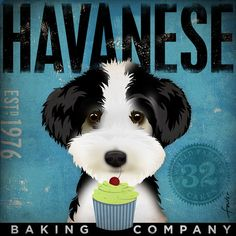 Havanese Cupcake  Company original graphic by geministudio on Etsy, $39.00