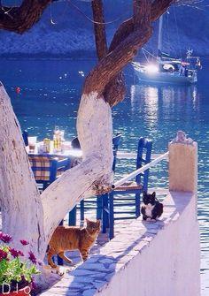 Assos, Kefalonia Island, Greece | by diokaminaris