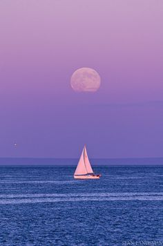 Sailing in the moonlight