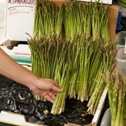 How to Grow Asparagus in Raised Beds | eHow