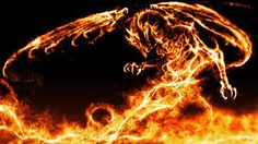 dragon pictures - Google Search