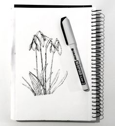 How to Draw Beautiful Floral Art with Pens Flower Art Drawing, Flower Drawing Tutorials, Pencil Drawings Of Flowers, Flower Sketches, Floral Drawing, Pencil Art Drawings, Outline Drawings, Easy Drawings, Art Tutorials