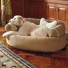 Comfy Couch Pet Bed - Frontgate