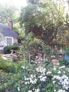 A perennial garden in progress...