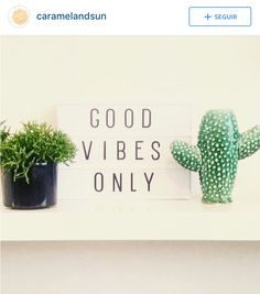 🌵 good vibes only. A Little Lovely Company, Good Vibes Only, Lightbox, Place Card Holders, Instagram Posts, Wisdom