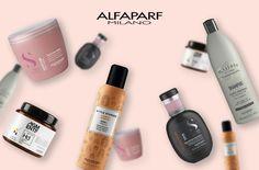 Hair Care, Shampoo, Personal Care, Bottle, Beautiful, Beauty, Fragrance, Self Care, Personal Hygiene