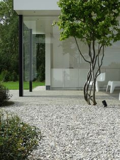 Need some low maintenance garden design ideas? Learn the fundamentals and tips to creating the perfect low mainteance outdoor space in our feature article. Contemporary Garden Design, Home Garden Design, Landscape Design, Home And Garden, Low Maintenance Garden Design, Specimen Trees, Garden Architecture, Dream Garden, Garden Inspiration