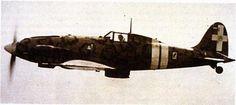 MC-202 fighter in fligh