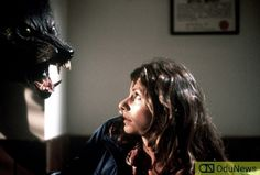 From 'The Howling' to 'Ginger Snaps': Ranking 12 of the Best Werewolf Movies! Best Werewolf Movies, Werewolf Stories, Scary Movies, Dee Wallace, Katharine Isabelle, Lon Chaney Jr, Dog Soldiers, American Werewolf In London, The Howling
