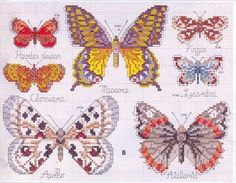 Schema punto croce Farfalle 23