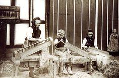 Frauen in der Schwalm (?) beim Flachsbrechen, 1935-1939