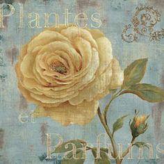 Vintage Fragrance III by Daphne Brissonnet