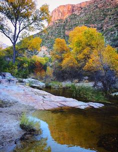Sabino Canyon | Tucson | Arizona | Hiking | Photo via Instagram by @blackandgoldilocks