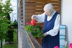 magán idősek otthona fejér megye - Google-keresés Outdoor Structures, Google