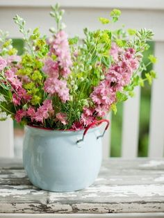 Pink delphinium in a light blue vase