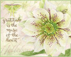 January 2014 ~ Lang.com desktop wallpapers - Botanical Inspiration