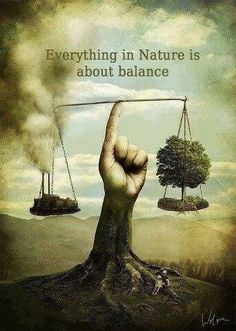 Wherever we look in nature we cannot fail to notice that balance is a main characteristic of everything.