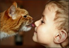 child and animal   ... children helping them to grow up more responsible and humane children