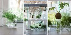 cavalli-estate-fine-art-wedding-photographer Landscape Background, Real Weddings, Garden Design, Fine Art, Backyard Landscape Design, Yard Design, Garden Planning, Visual Arts