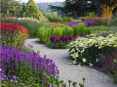 Fantastic perennial garden with big blocks of color. Takes a lot of discipline.