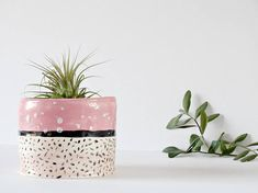 Ceramic Cactus Planter Desk Planter Small Planter Succulent