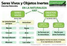 Seres Vivos y Objetos Inertes - Ciencias Naturales - (New Version)