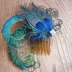 Peacock Wedding Ideas | peacock feathers