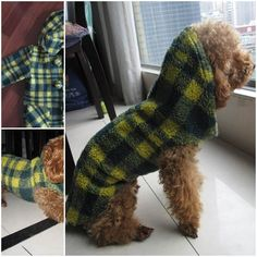 DIY Easy Dog Coat from the Sleeve of an Old Coat