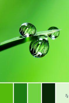 ZJ Colour Palette 216 #colourpalette #colourinspiration