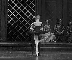 ZsaZsa Bellagio – Like No Other: Ballet Beautiful / Sarah Lamb and Steven McRae in Swan Lake at the Kremlin Ballet Lifts, Ballet Turns, Jeane Manson, Sarah Lamb, Famous Ballets, Pretty Ballerinas, Royal Ballet, Ballet Beautiful, Dancing In The Rain