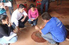 Tijolo Ecológico feito com casca de coco da Amazônia entra no processo final dos…